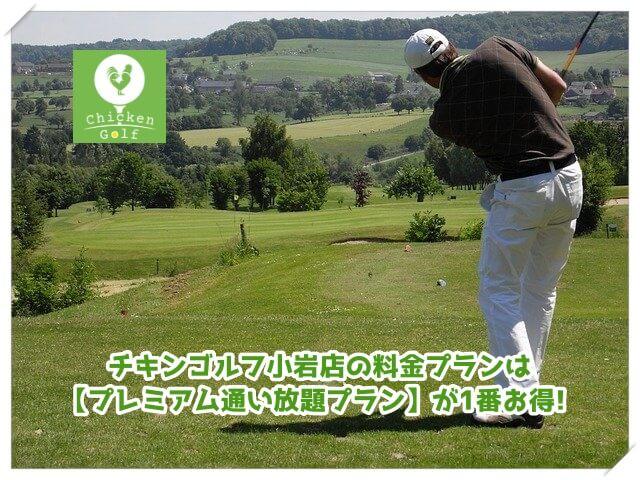 チキンゴルフ小岩店の料金プラン